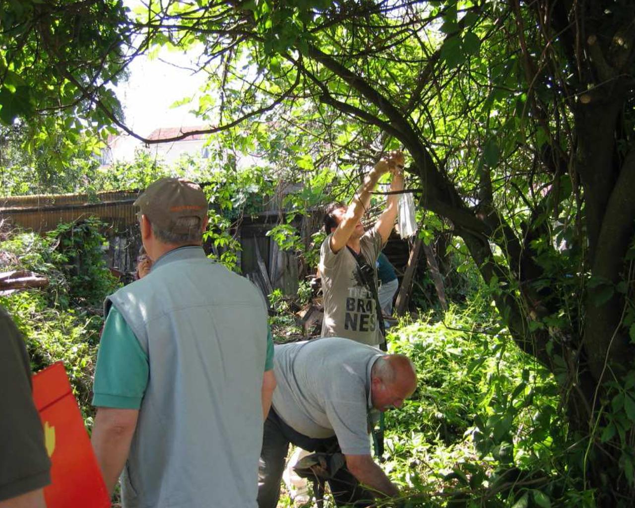 Pulizia dell'area e recupero materiali - Giardino degli orti